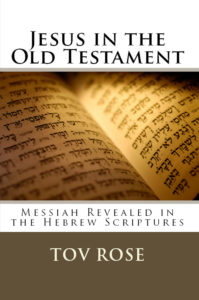 Jesus in the Old Testament Cover